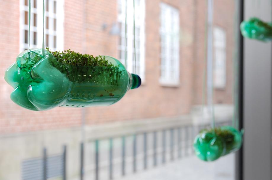 karse-flaske-vindue